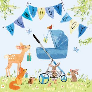 FIZ5 - New Baby Boy Card Woodland